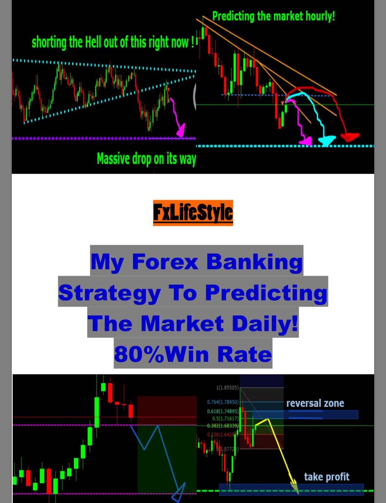 Forex course reviews